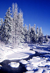 Winter, Lakefork Creek near McCall, Idaho - Strictly copyrighted John T. Baker Photographer LLC, JayBee Stock.com
